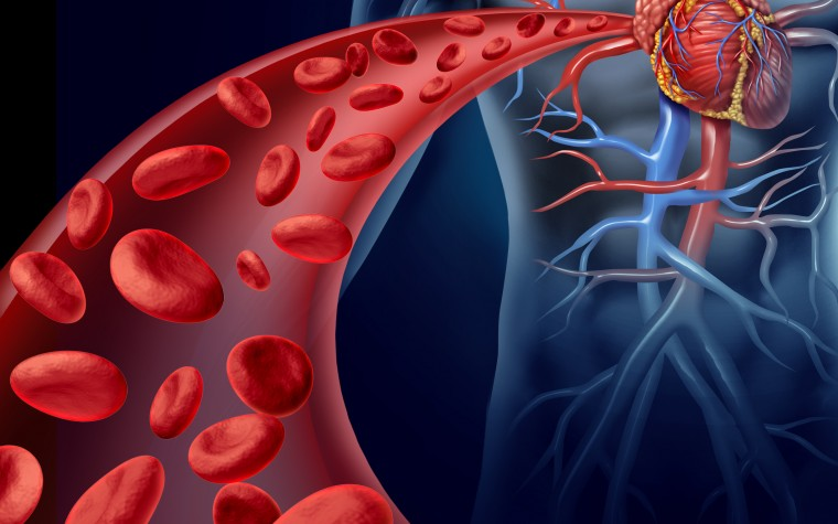 High coronary artery calcium scores risky