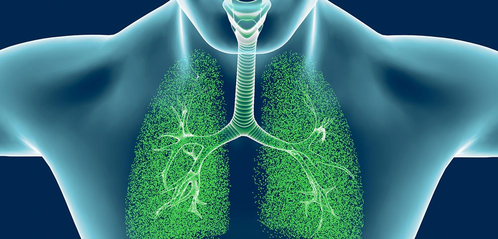 Wnt5a Protein Contributes to Loss of Lung Regeneration in COPD, Study Says