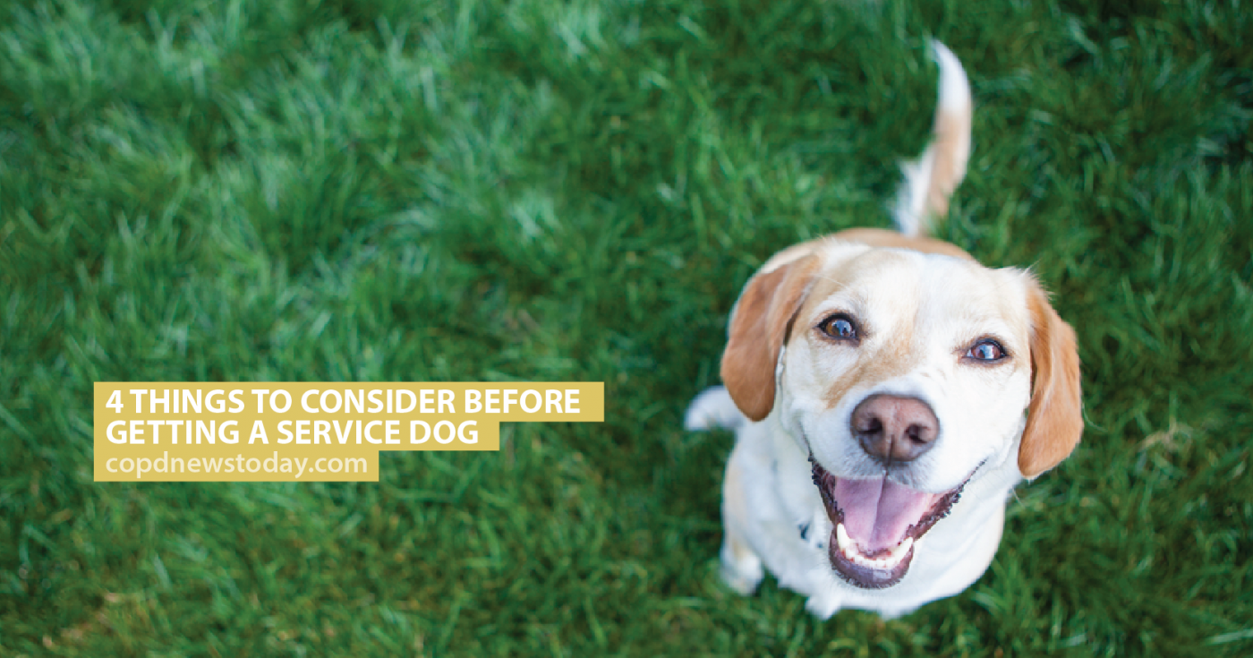 4 Things to Consider Before Getting a Service Dog - COPD