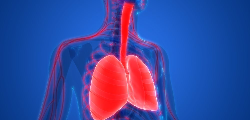 Early Trial Findings Hint at SNG001 Aiding COPD Patients with Viral Infections