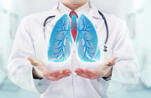 Virtual Model Identifies Factors Contributing to Lung Dysfunction in Mice with COPD