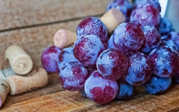 grape polyphenol
