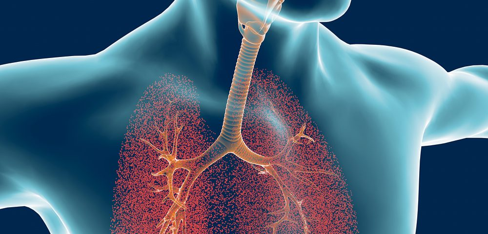 Mucus Protects Lungs by Forming Layers, Preventing Worsening of Lung Diseases, Studies Reveal