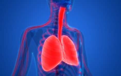 Zephyr Endobronchial Valve Improves Breathing in Severe Emphysema, Study Finds